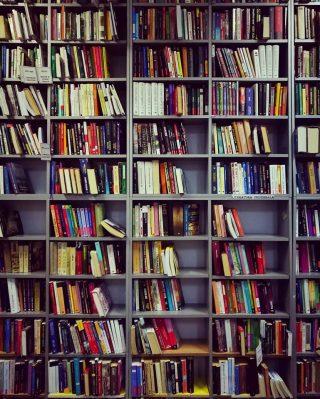 Biblioteca Nichita Stănescu